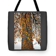 Golden Leaves In Mt Vernon Tote Bag