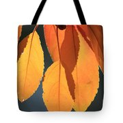 Golden Leaves With Golden Sunshine Shining Through Them Tote Bag