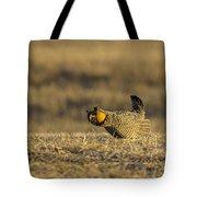 Golden Light On The Prairie Tote Bag