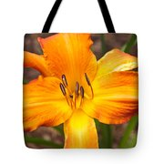 Golden Lilly 2 Tote Bag