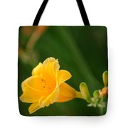 Golden Lilly Tote Bag