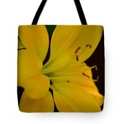 Golden Lily Glow Tote Bag