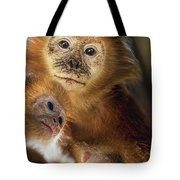 Golden Lion Tamarin Mother And Baby Tote Bag