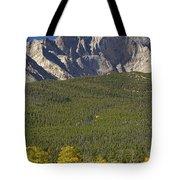 Golden Longs Peak View Tote Bag