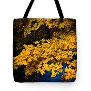 Golden Maples Tote Bag