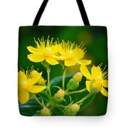 Golden Miracles Tote Bag