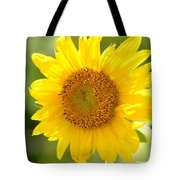 Golden Moment - Sunflower Tote Bag