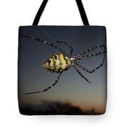 Golden Orb Web Spider Tote Bag