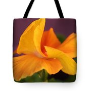 Golden Pansy Tote Bag