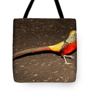 Golden Pheasant Male Tote Bag