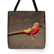 Golden Pheasant Pair Tote Bag