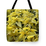 Golden Poinsettias Tote Bag