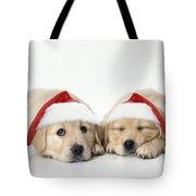 Golden Reriever Puppies, 7 Weeks Old Tote Bag