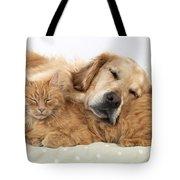 Golden Retriever And Orange Cat Tote Bag