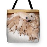 Golden Retriever Dog, Litter Suckling Tote Bag