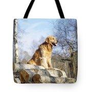 Golden Retriever Dog On Logs Tote Bag