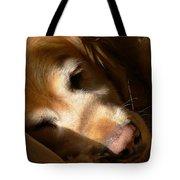 Golden Retriever Dog Quiet Time Tote Bag