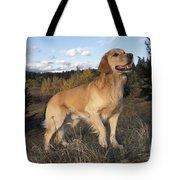 Golden Retriever Dog Tote Bag