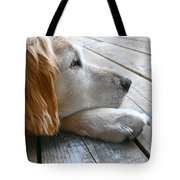 Golden Retriever Dog Waiting Tote Bag