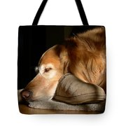 Golden Retriever Dog With Master's Slipper Tote Bag