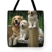 Golden Retriever Dog With Puppies Tote Bag