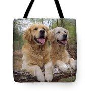 Golden Retriever Dogs Tote Bag