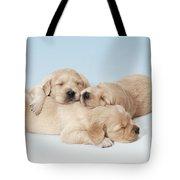 Golden Retriever Puppies Asleep Tote Bag