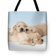 Golden Retriever Puppies Asleep Tote Bag