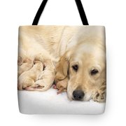 Golden Retriever Puppies Suckling Tote Bag