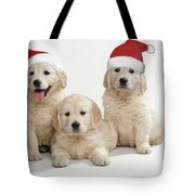 Golden Retriever Puppies With Christmas Tote Bag
