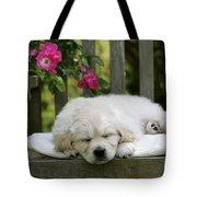 Golden Retriever Puppy Sleeping Tote Bag