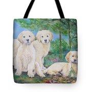 Golden Retriever Puppy Trio  Tote Bag