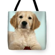 Golden Retriever Puppy With Rose Tote Bag