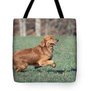 Golden Retriever Running Tote Bag