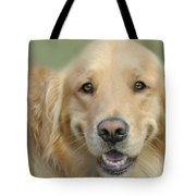 Golden Retriever Standard Tote Bag