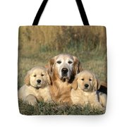 Golden Retriever With Puppies Tote Bag