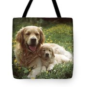 Golden Retrievers Dog And Puppy Tote Bag