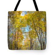 Golden Road Tote Bag