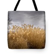 Golden Shades Of Winter Tote Bag