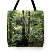 Golden Silence In The Forest Tote Bag