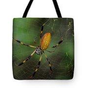 Golden Silk Spider 10 Tote Bag