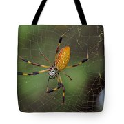 Golden Silk Spider 9  Tote Bag