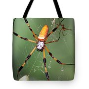 Golden Silk Spider Capturing A Stinkbug Tote Bag
