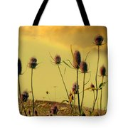 Teasels Reach For The Golden Sky Tote Bag