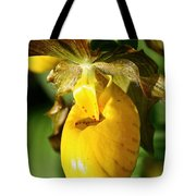 Golden Slipper Tote Bag