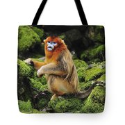 Golden Snub-nosed Monkey Male China Tote Bag
