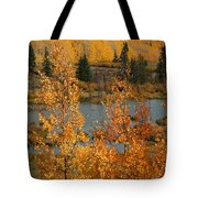 Golden Spot Tote Bag