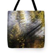 Golden Sunbeams Tote Bag