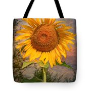 Golden Sunflower Tote Bag by Adrian Evans