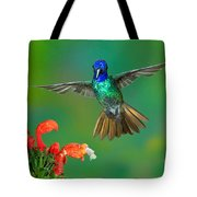 Golden-tailed Sapphire At Flower Tote Bag